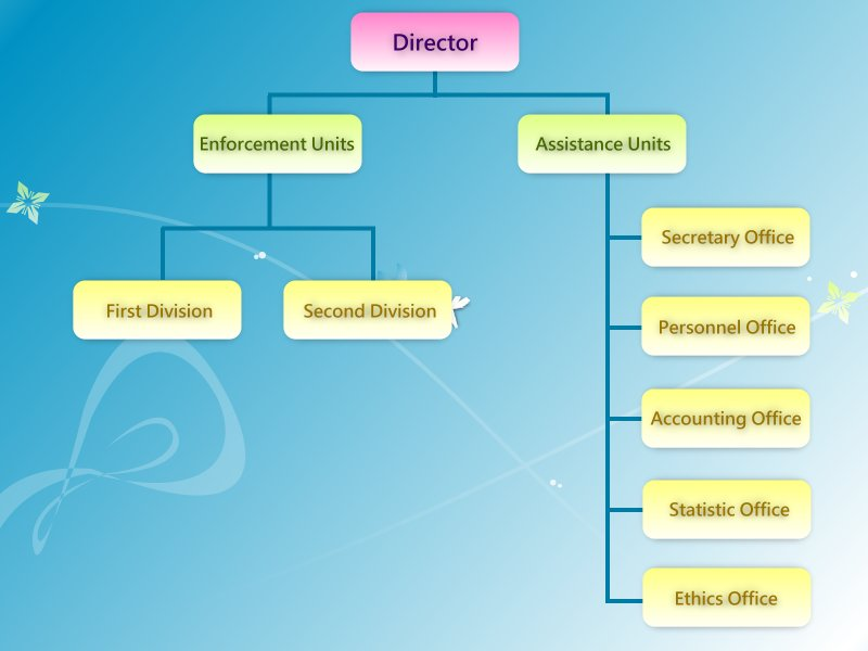 Organization Structure picture